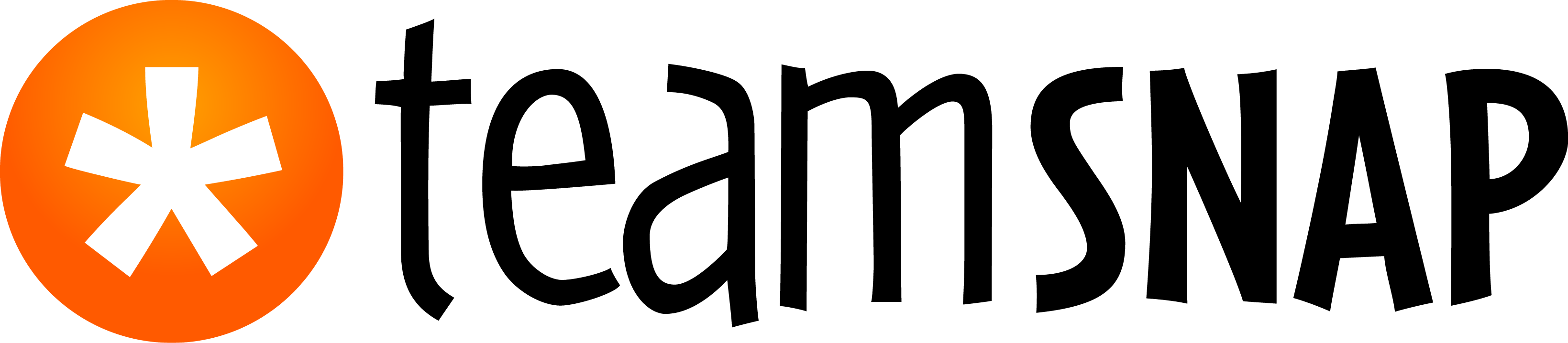 TeamSnap no Background logo